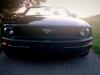 Ford Mustang 2005 V6 Convertible