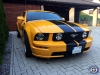 Ford Mustang 2007 GT